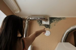 Mold Removal and Remediation Services in Stoneham, MA by ServiceMaster Disaster Associates Inc