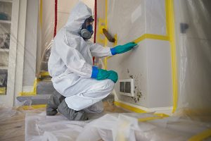 Mold remediation and removal services in Stoneham, MA and NH by ServiceMaster Disaster Associates, Inc.